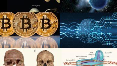 صورة أفضل الأخبار العلمية 2017