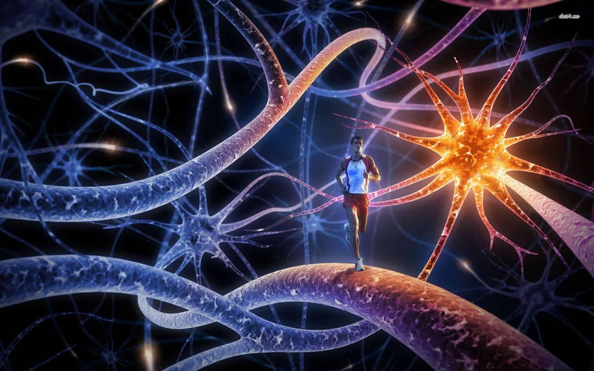 صورة التعلم العميق: ثورة الكمبيوتر النهائية في تحدي ذكاء الإنسان